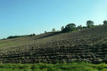Минимальный срок аренды земель сельскохозяйственного назначения
